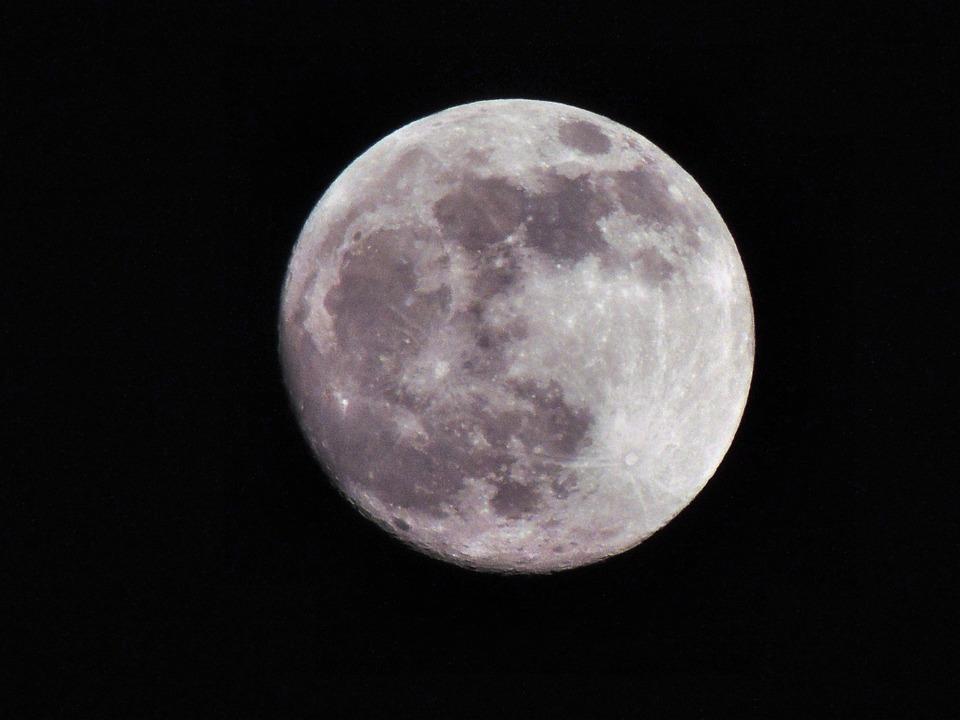 family-moonwatching-night