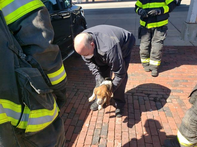 a-beagle-was-trapped-under-pickup-for-40-miles.-these-firefighters-came-to-the-rescue