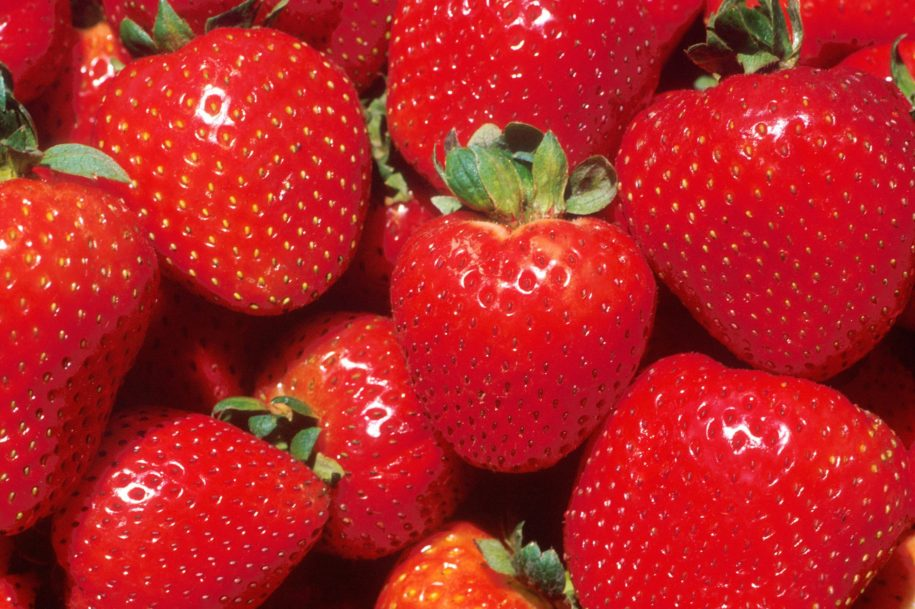 fact-check:-yes,-little-bugs-may-live-in-your-strawberries-and-blueberries