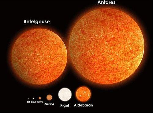 looking-up-column:-antares,-the-red-star-of-summer
